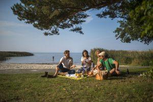 natur picknick
